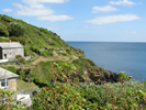 Picture of Caddydaw - Portloe